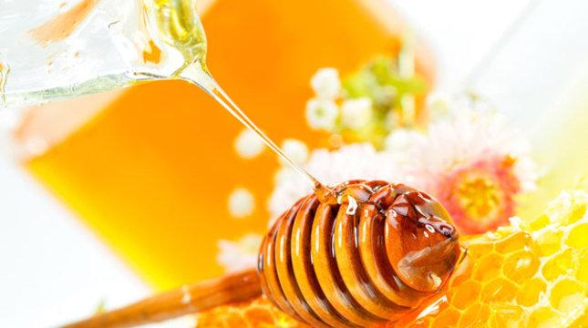 Темы, гаджеты, шрифты. соты, honey dipper, мёд, цветы обои, фото, картинка.